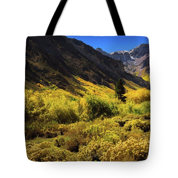Tote Bag featuring the photograph Mcgee Creek Alive With Color by John Hight