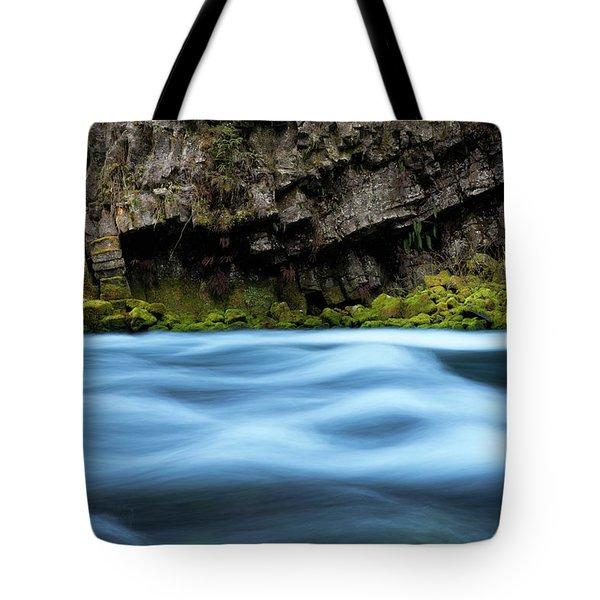 Mckenzie Blue Tote Bag