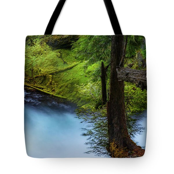 Tote Bag featuring the photograph Mckenzie River From Sahalie Falls by Cat Connor