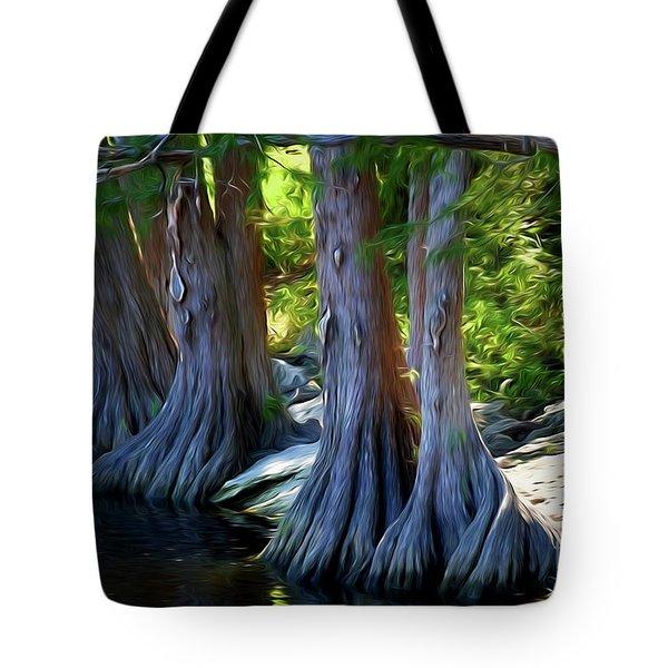 Mckinney Falls State Park - Texas 12118-2 Tote Bag