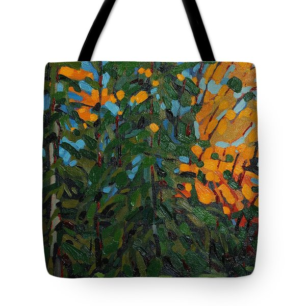 Mcmichael Forest Wall Tote Bag by Phil Chadwick