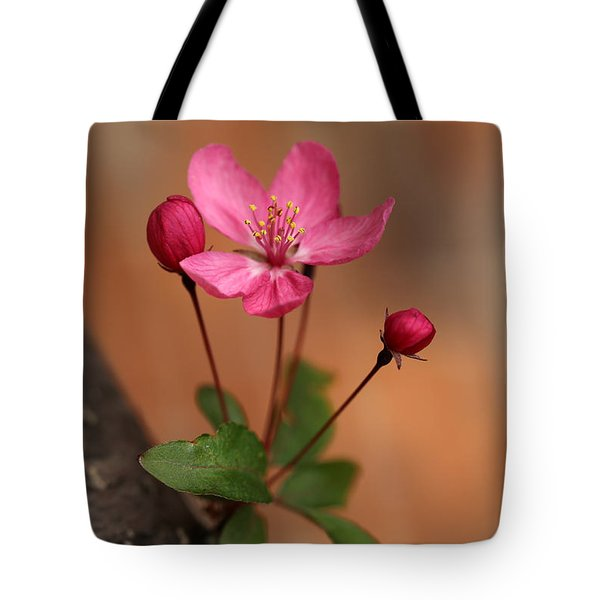 Me And My Buds 2 Tote Bag by Mary Bedy