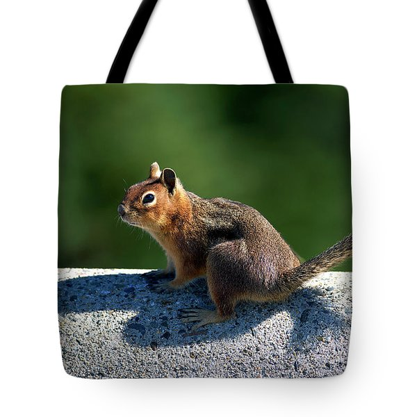 Tote Bag featuring the photograph Me And My Shadow by Sharon Talson