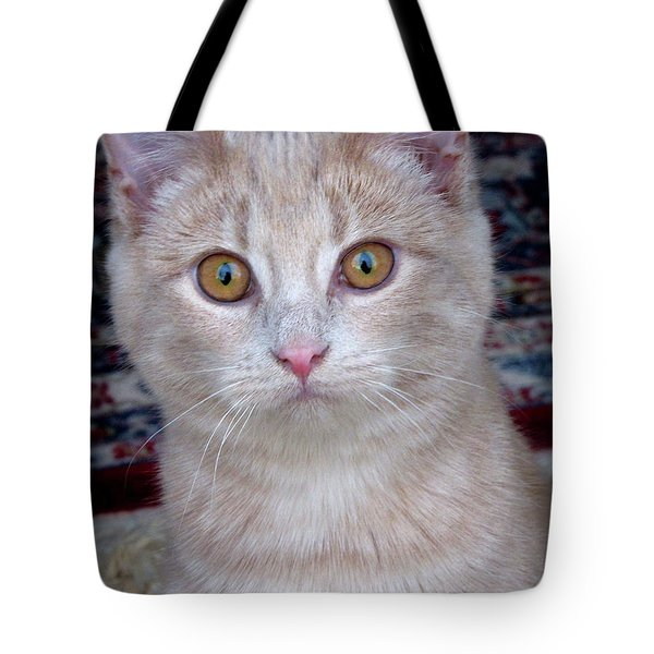 Me- No, It Was The Dog Tote Bag