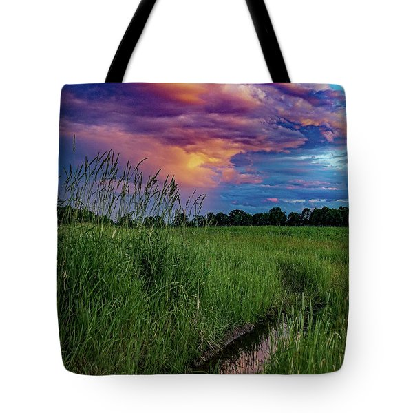 Tote Bag featuring the photograph Meadow Lark by Kendall McKernon