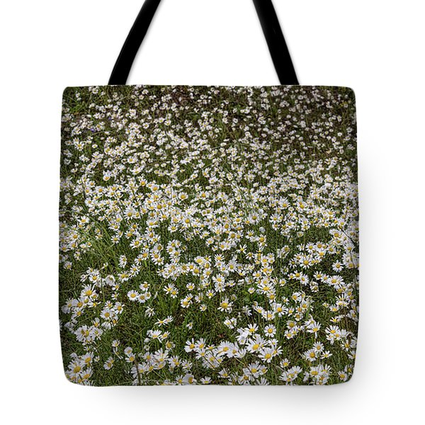 Tote Bag featuring the photograph Meadow Of Daisey Wildflowers Panorama by James BO Insogna