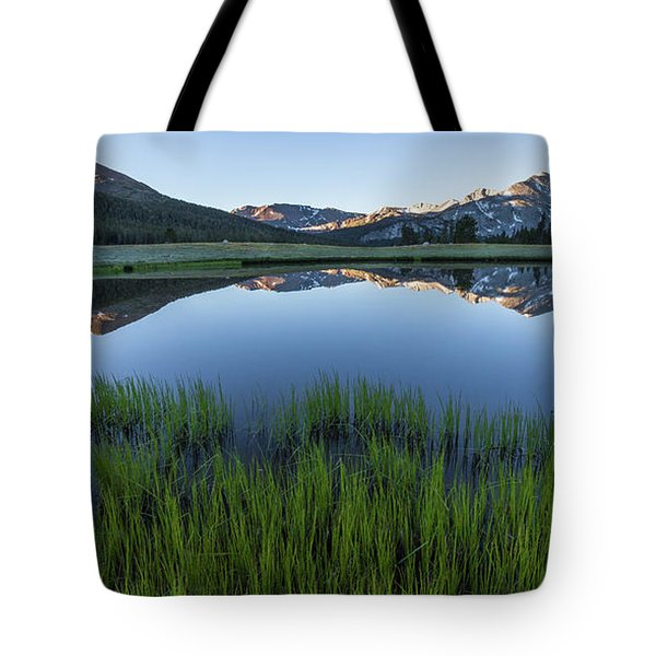 Meadow Reflections  Tote Bag