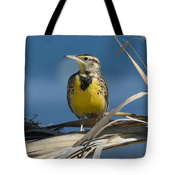Meadowlark Beauty Tote Bag
