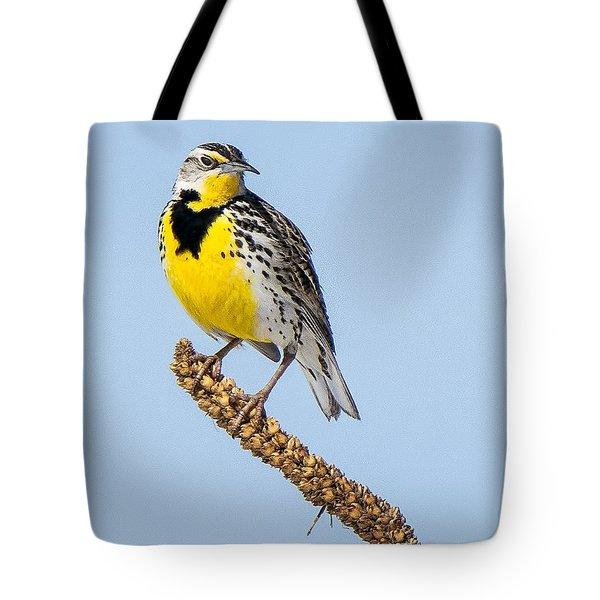 Meadowlark On Mullein Stalk Tote Bag by Stephen Johnson