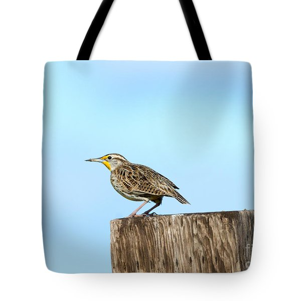 Meadowlark Roost Tote Bag
