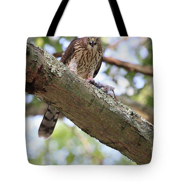 Mean Hawk At Dinner Time Tote Bag