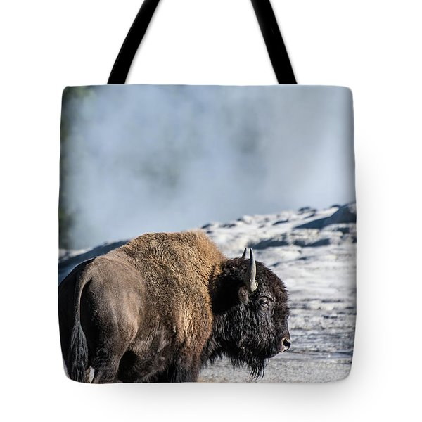 Tote Bag featuring the photograph Meandering by Colleen Coccia