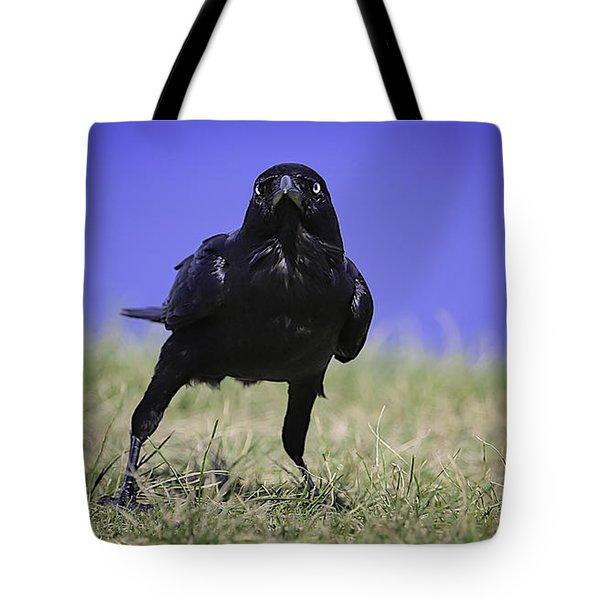 Menacing Crow Tote Bag