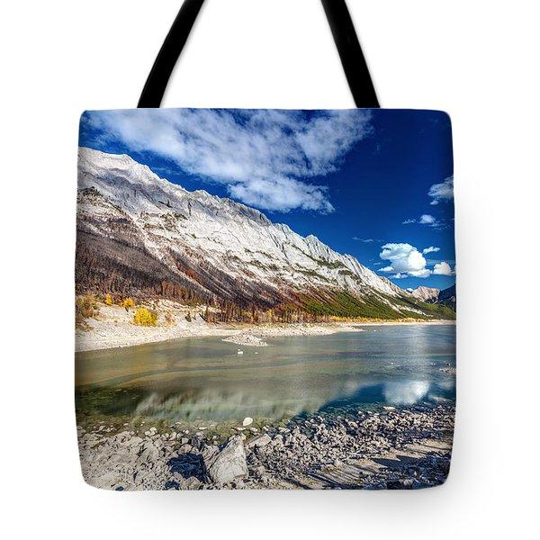 Medicine Lake Jasper Tote Bag