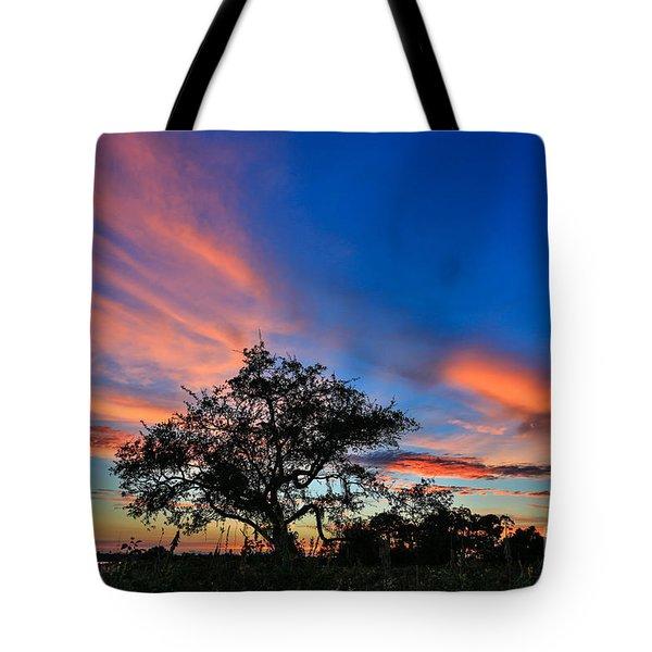 Meditate Tote Bag by Mina Isaac