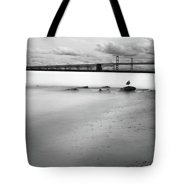 Tote Bag featuring the photograph Meditating Sea Gull by Dennis Dame
