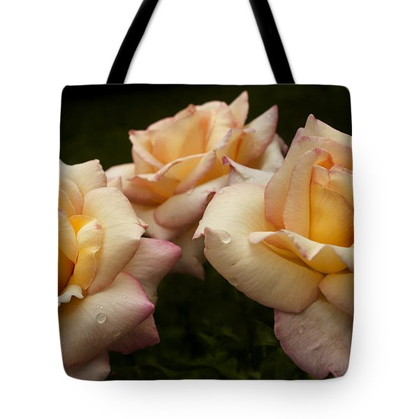 Medley Of Three Yellow Roses Tote Bag by Barbara Middleton