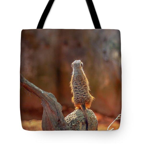Meerkat 2 Tote Bag