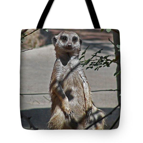 Meerkat 2 Tote Bag by Ernie Echols