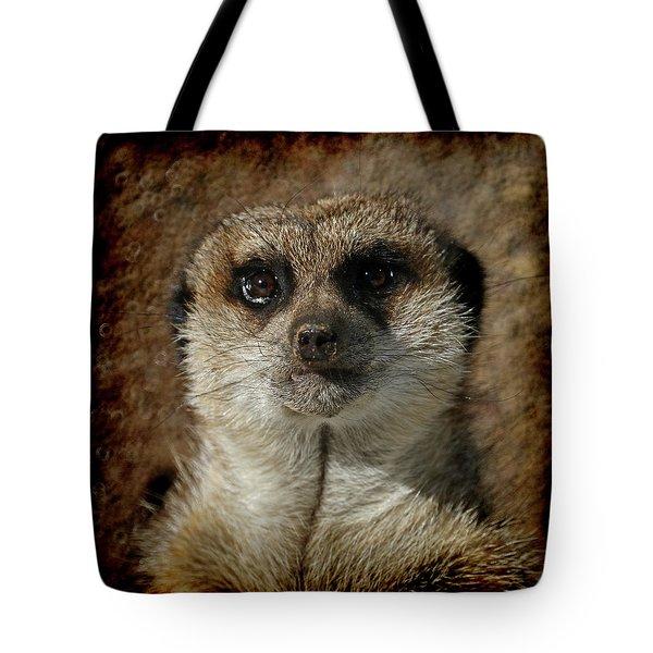 Meerkat 4 Tote Bag by Ernie Echols