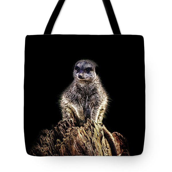 Meerkat Lookout Tote Bag