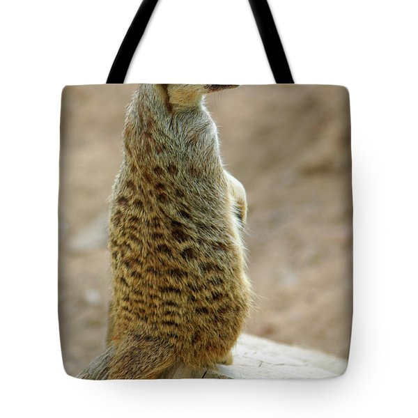 Meerkat Portrait Tote Bag by Carlos Caetano
