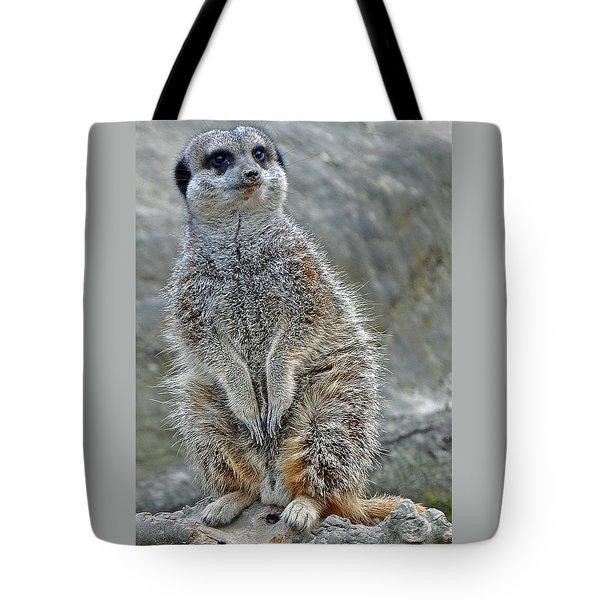 Meerkat Poses Tote Bag