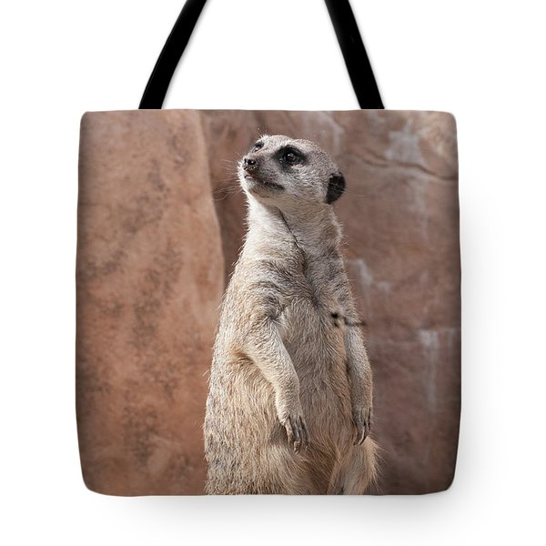 Meerkat Sentry 1 Tote Bag