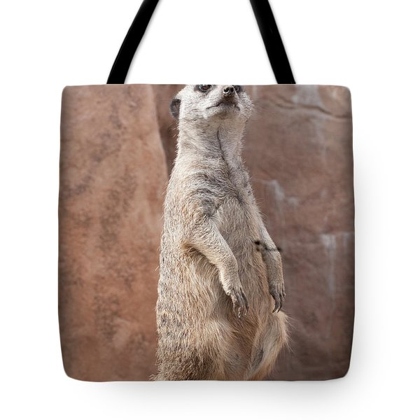 Meerkat Sentry 2 Tote Bag