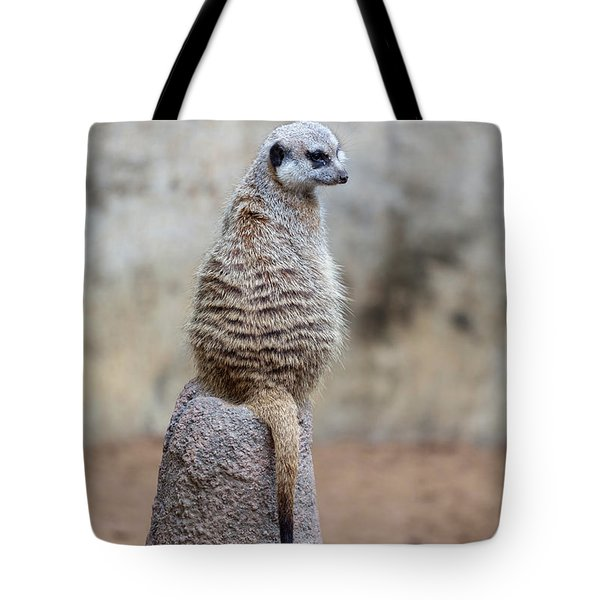 Meerkat Sitting And Looking Right Tote Bag