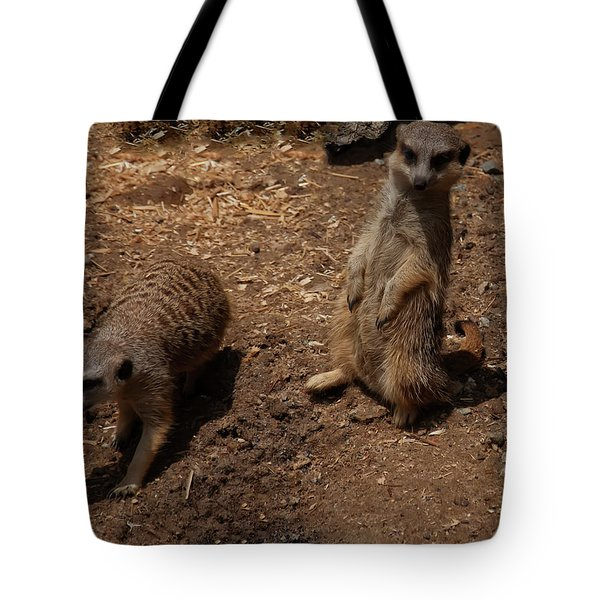 Tote Bag featuring the photograph Meerkats by Chris Flees