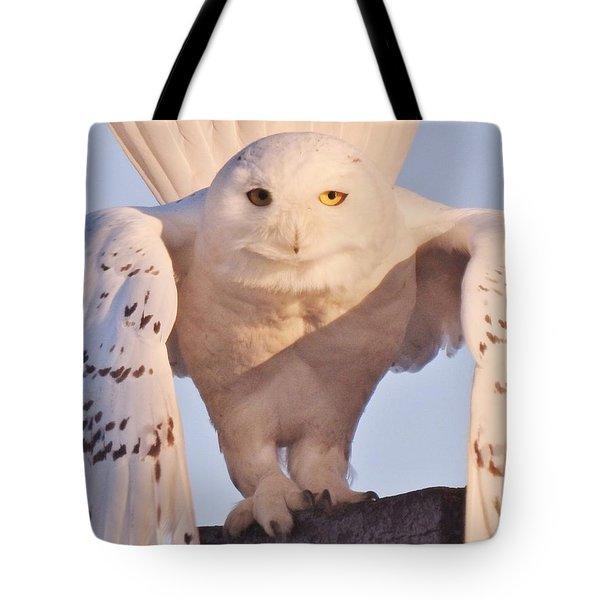 Meet Roofus Tote Bag