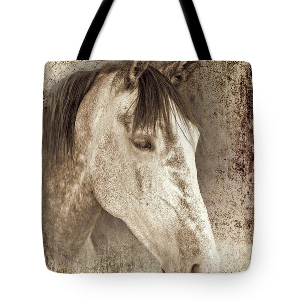 Meet The Andalucian Tote Bag