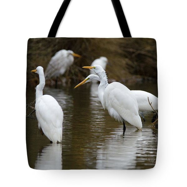 Meeting Of The Egrets Tote Bag by George Randy Bass