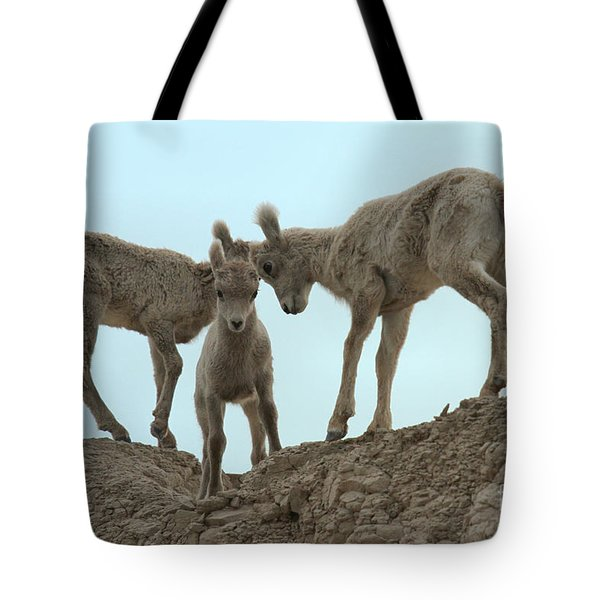 Meeting Of The Heads Tote Bag