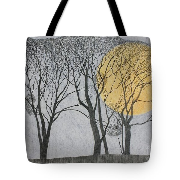 Megamoon Tote Bag by Ann Brain