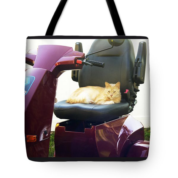 Tote Bag featuring the photograph Mego And Erick 2 by Megan Dirsa-DuBois