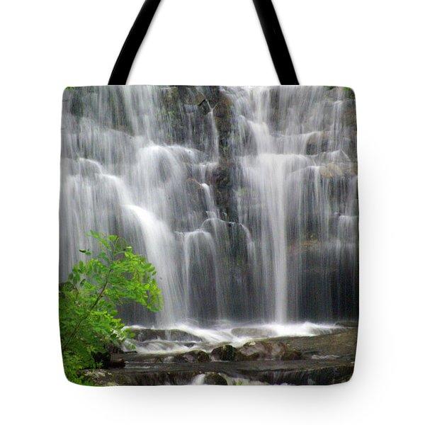 Meigs Falls 2 Tote Bag by Marty Koch