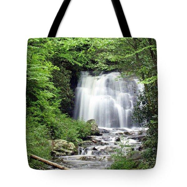 Meigs Falls Tote Bag by Marty Koch