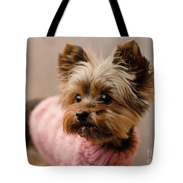 Tote Bag featuring the photograph Melanie In Pink Mohair  by Irina ArchAngelSkaya