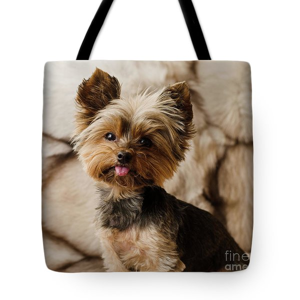 Tote Bag featuring the photograph Melanie On Fur by Irina ArchAngelSkaya
