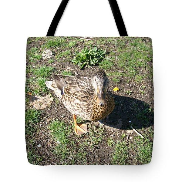 Melanie Tweed Visit At Boundary Bay Tote Bag