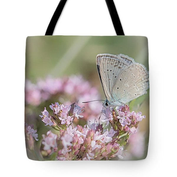 Meleagers Blue Butterfly Tote Bag