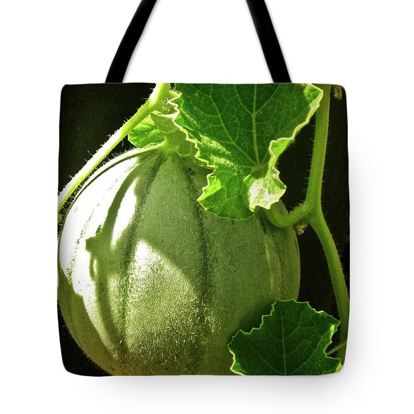 Mellow Mellon Tote Bag by Gwyn Newcombe