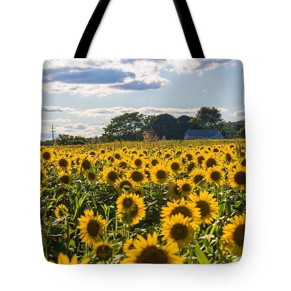 Mellow Yellows Tote Bag