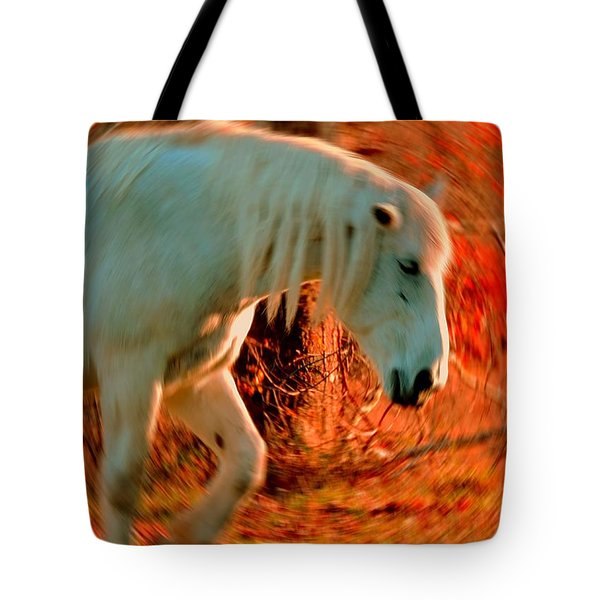 Memories At Sunset Tote Bag