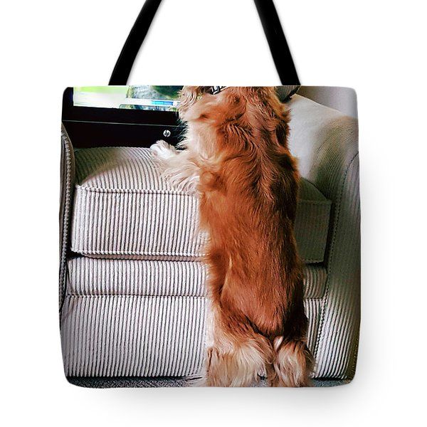 Tote Bag featuring the photograph Meow Woof by Polly Peacock