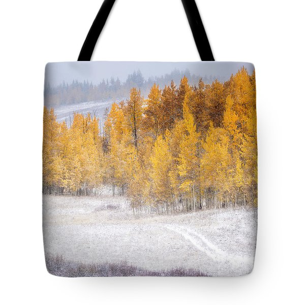 Merging Seasons Tote Bag