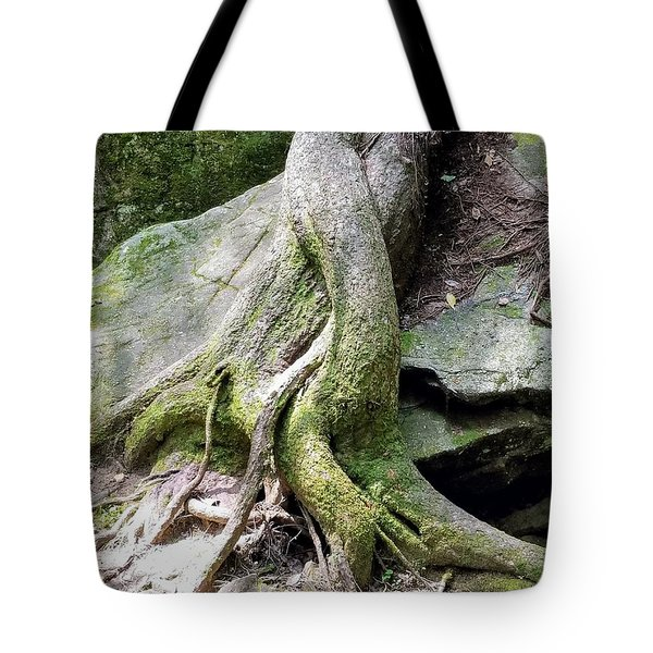 Mermaid Tails Tote Bag