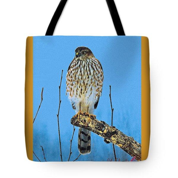 Merlin    Not The Majician Tote Bag
